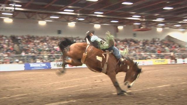 Day Two 37th Annual Montana Pro Rodeo Circuit Finals