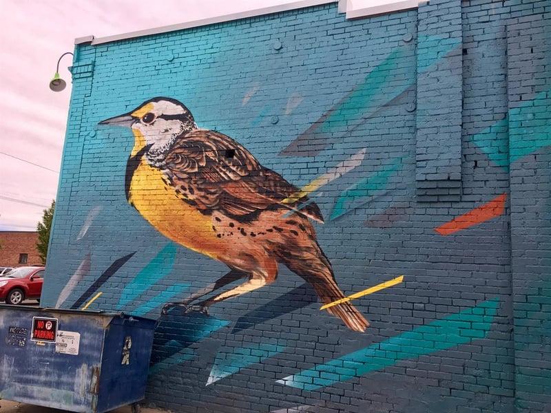 bye bye blank walls murals in great falls kulr8 com news
